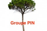 AAF – Groupe PIN : Digital data, an endangered species ?